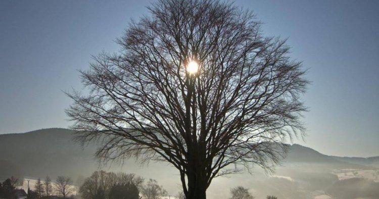 Az év legsötétebb napján ritka adomány lesz a napsütés