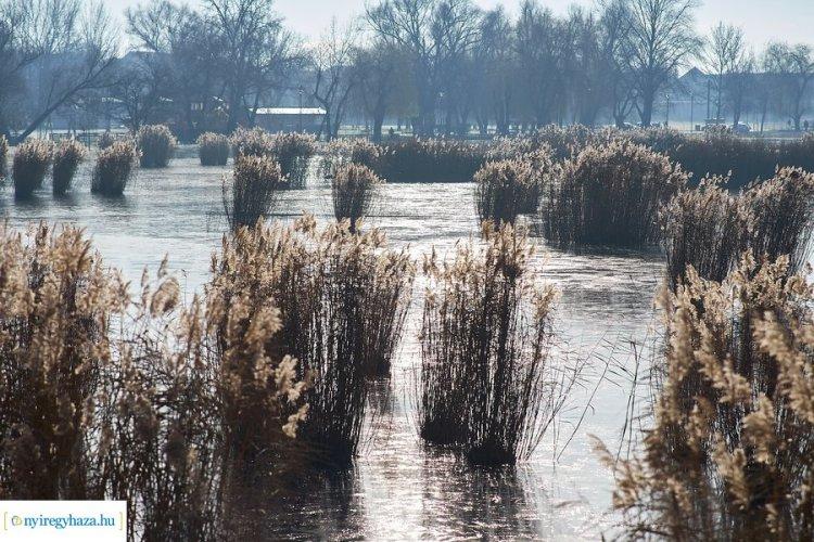 Képeken a Bujtosi Városliget! Télen is mesés látványt nyújt!