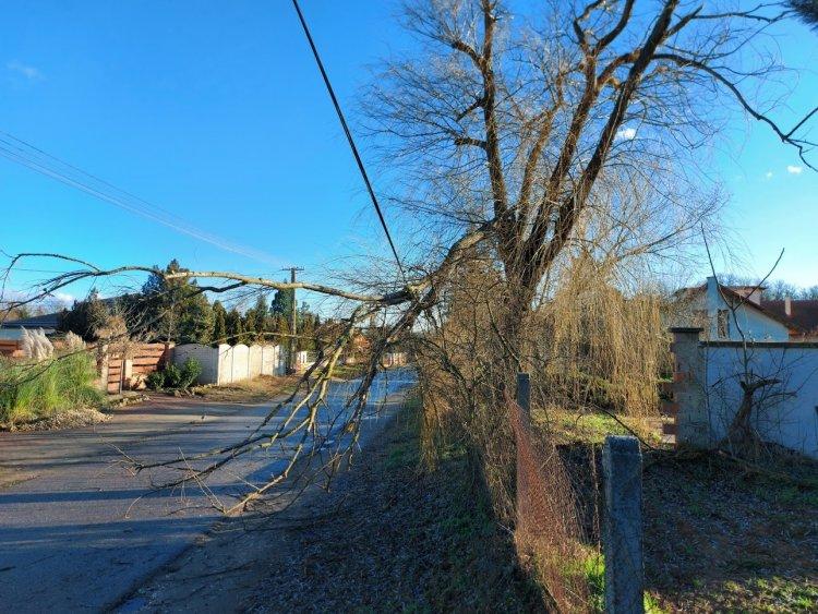 Jelentős károkat okozott a kedd hajnalban érkezett viharos szél Nyíregyháza több pontján