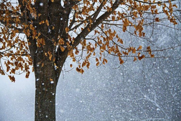 Többfelé lehet gyenge havazás, hószállingózás és -10 fokig is csökkenhet a hőmérséklet