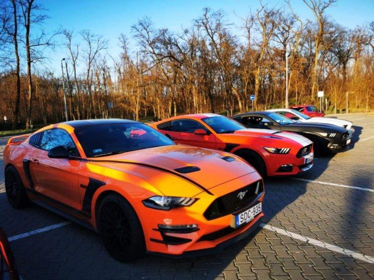 Képeken a nyíregyházi autócsodák! Egy éve alakult a Mustang Klub!