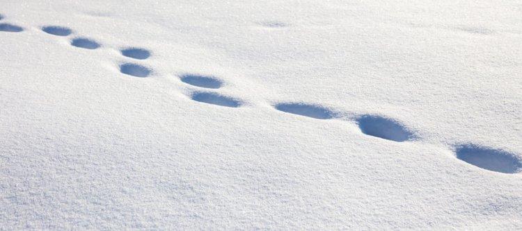Jobb lesz, ha felkészülünk a hétvégi időjárásra - újabb havazás várható