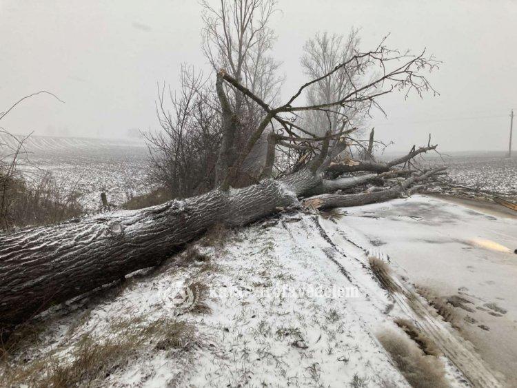 Megyei katasztrófavédelem: a téli időjárás miatt fokozott odafigyelésre van szükség