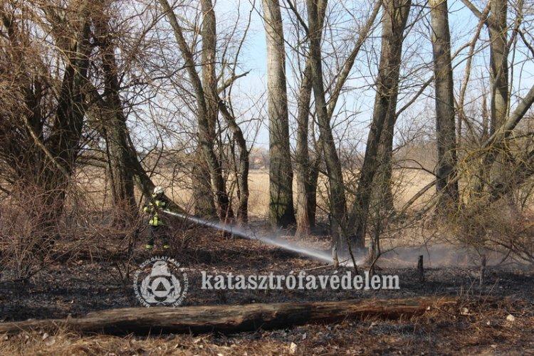 Megkezdődtek a kerti munkálatok, várhatóan megszaporodnak a szabadtéri tüzek is