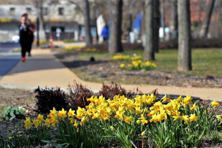 Tavaszi pillanatképek Nyíregyházáról! Még sok ilyen hétvégét szeretnénk!
