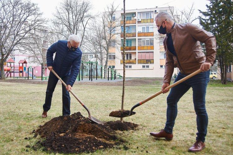 Megépült kilenc új szabadtéri sportpark és folytatódik a nagyszabású fásítási program