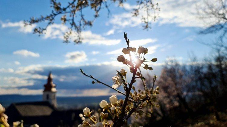 Ma megtudjuk mi kell egy valódi tavaszi naphoz