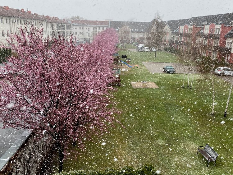 Nyíregyházára is megérkezett a Meteorológiai Szolgálat által ígért havazás