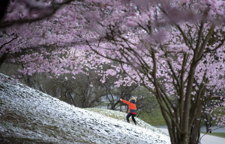 Bolondos április: napsütés, zápor és hózápor is lehet
