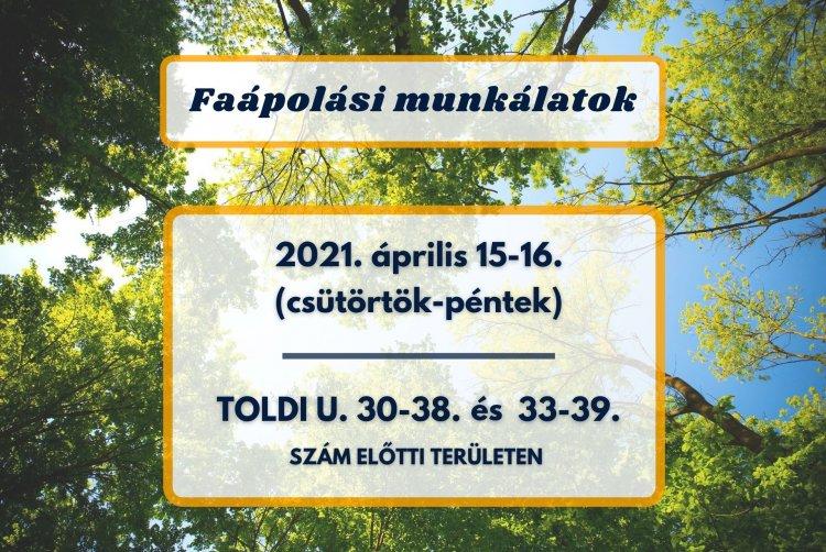 Faápolási munkálatokat végez a NYÍRVV a Toldi utcán április 15-én és 16-án