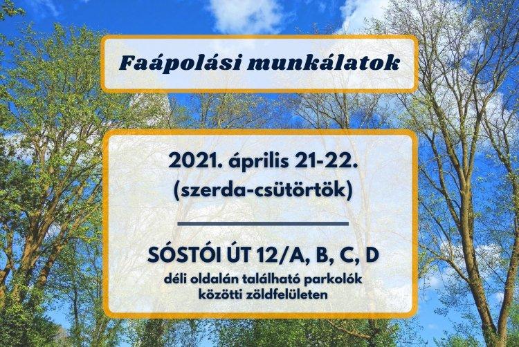 Szerdán és csütörtökön faápolási munkálatokat végez a NYÍRVV a Sóstói úton