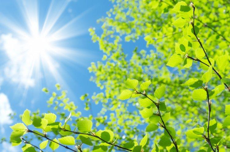 Országos Meteorológiai Szolgálat: ma már visszakacsint a tavasz