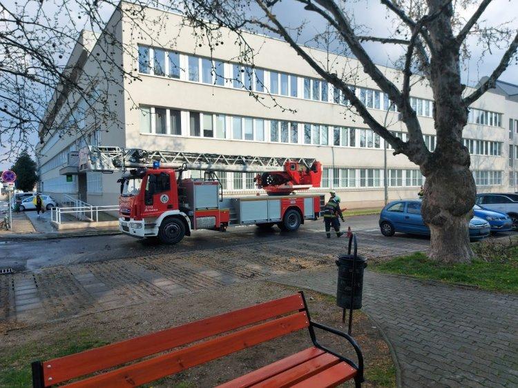 Veszélyes faágat távolítottak el a tűzoltók a Szabadság téren