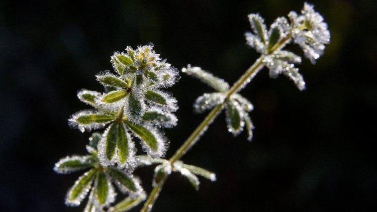 Országos Meteorológiai Szolgálat: hatvan éves hidegrekord dőlt meg