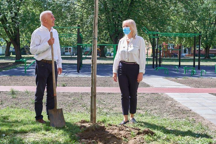 Újabb szabadtéri kondipark készült el Nyíregyházán, ezúttal a Szántó Kovács János utcán