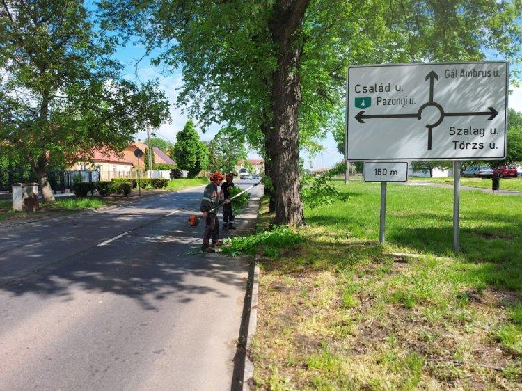 A Család utcán végzett favágási munkálatokat a NYÍRVV, a város több pontján is dolgoznak