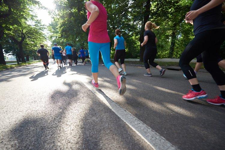 Újabb kihívás – Tízezer kilométernyi távot futnak Roma Ádámék június 25-ig