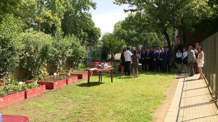 Gyógynövénykertet alakítottak ki a Zrínyiben