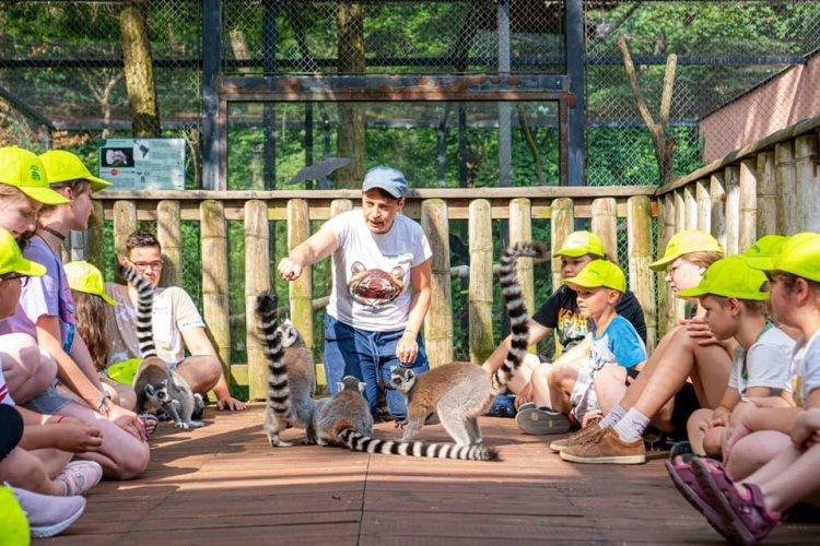 Állati kalandok – A héten kezdetét vette a Zoo-suli a Nyíregyházi Állatparkban