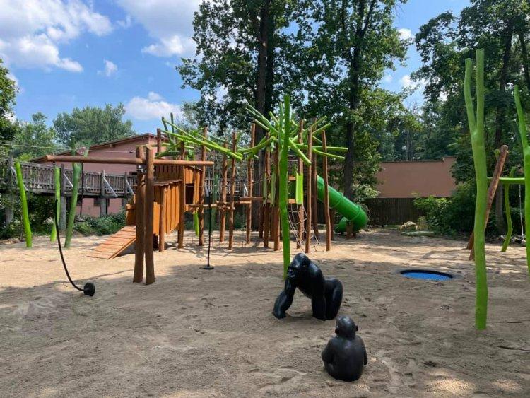 Elkészült az új Afrika Játszótér a Nyíregyházi Állatparkban, a Tarzan-ösvény hídjánál