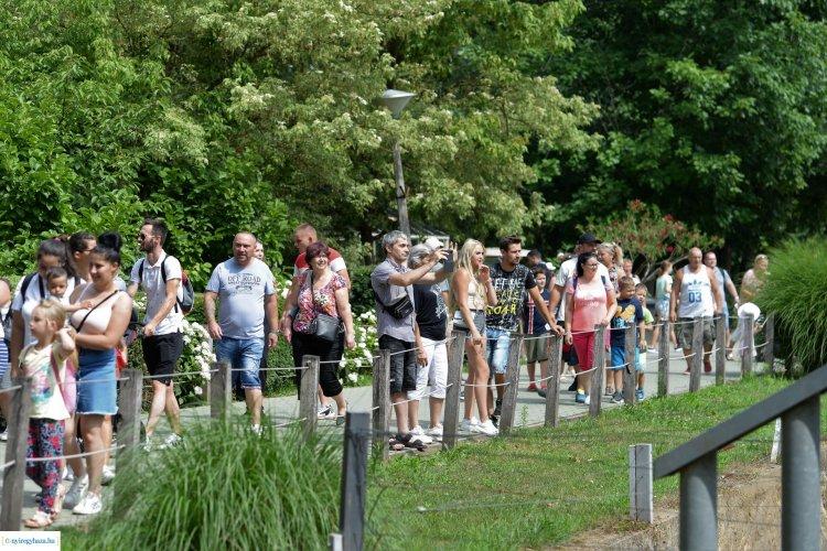 Családi nap az állatkertben – A szociális szférában dolgozók munkáját köszönték meg