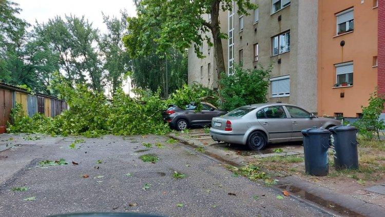 Nyíregyházát is elérte a vihar - Fák dőltek az utcákra! Fotók és videók!