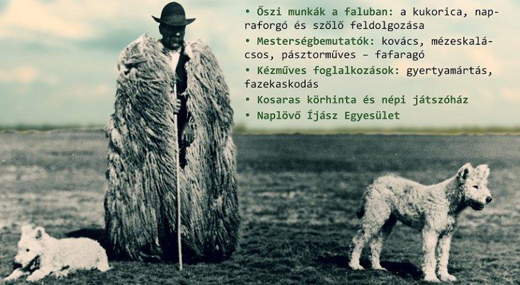 Pásztorok világa  –  Pásztorforgatag a Sóstói Múzeumfaluban